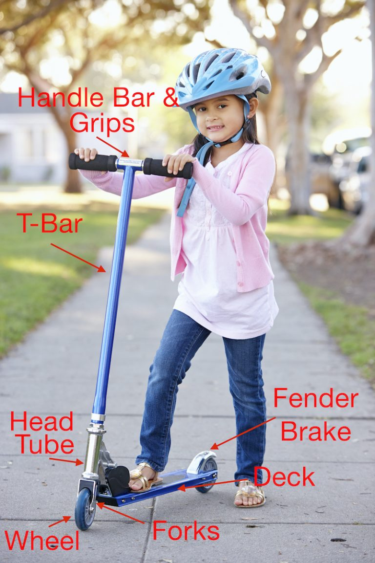 Terms for different parts of a scooter